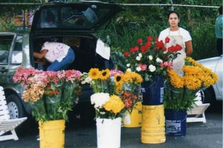 Aflora-floristeria-online-venezuela-ecuador